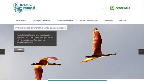 site sustentar bichos do pantanal