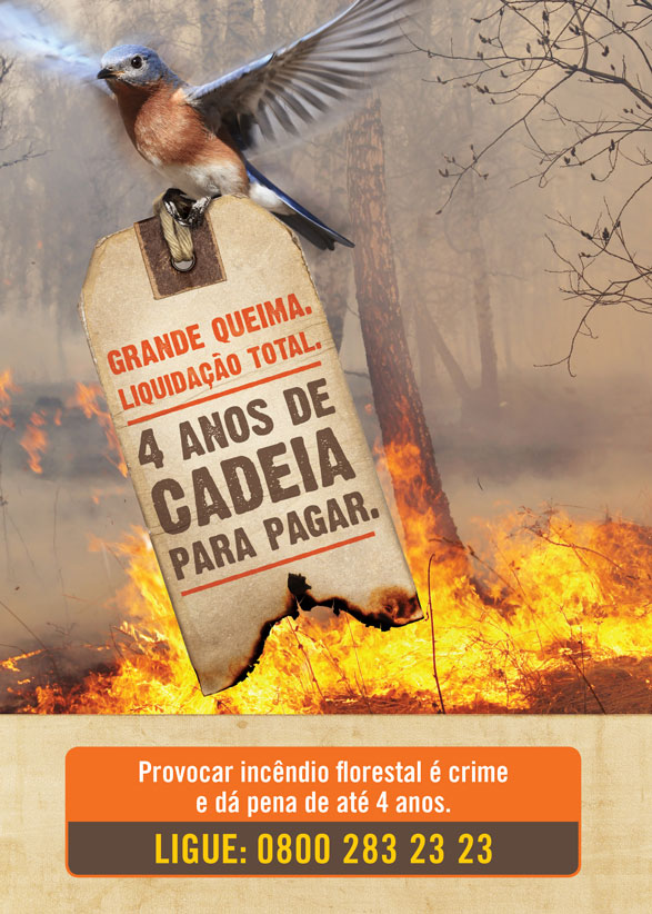 flyer_prev_incendio_frente